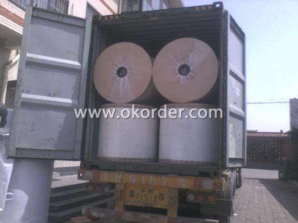 Stable Fiber Polyester Mat