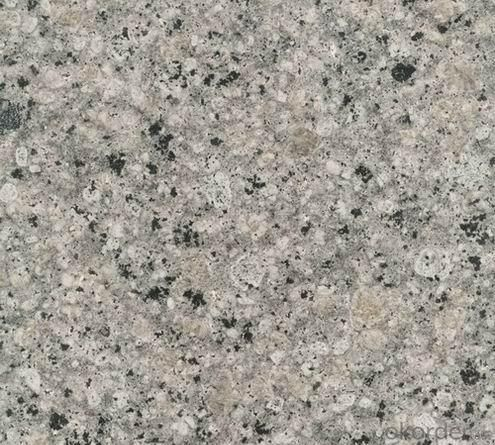 Granite Tile Kashmir White CMAXG2010