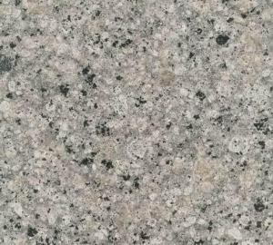 Granite Tile Kashmir White CMAXG2010