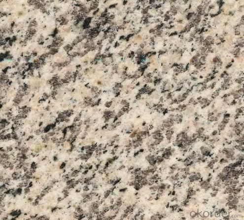 Granite Cafe Red tile CMAXG9001