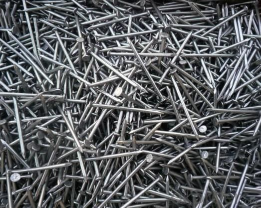 Stainless Steel Common Nails