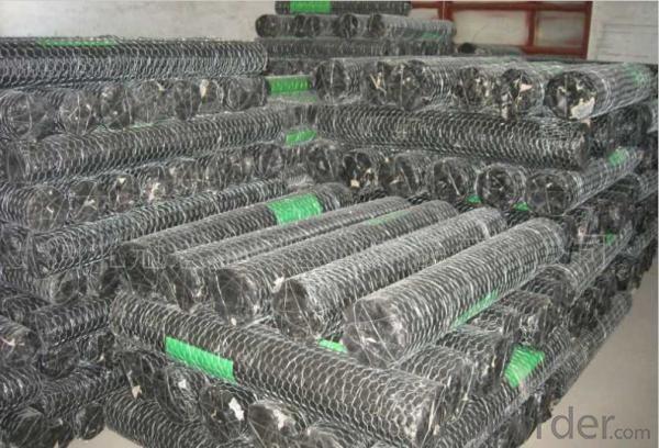 1/2''*1/2'' Galvanized Hexagonal Wire Netting