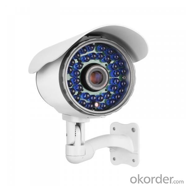 Outdoor Sony Color CCD IR Waterproof Camera
