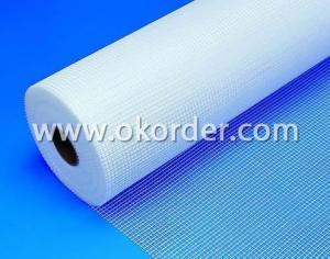 Fiberglass Mesh Cloth 60g  5*5mm