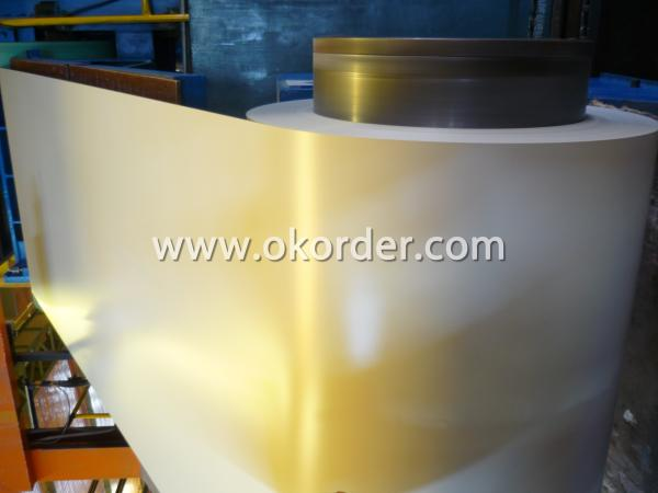 White Pregalvanized Steel Coil