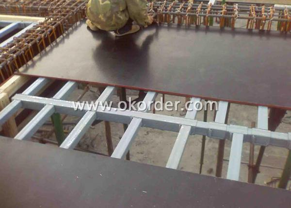 HDO Plywood