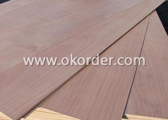 Eucalyptus Core Plywood