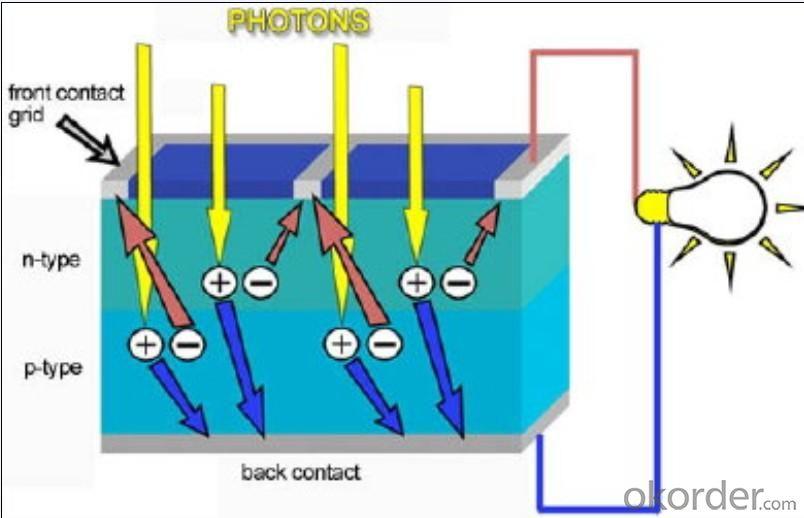 Mono Solar Cell 125mm 125 mm 125 mm  0.5 mm