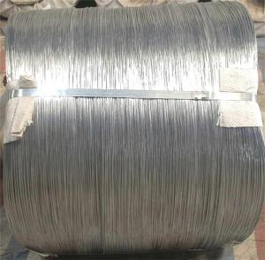Hot Dipped Galvanized Wire With Best Price