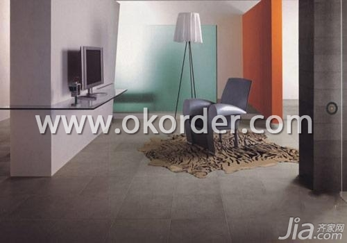 Glazed Porcelain Tile Of CMAX-SA1224