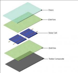 TPT/TPE Backsheet