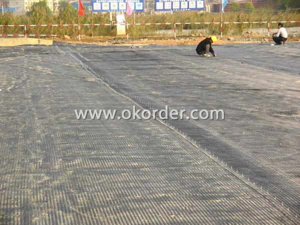 Application of Polyester Geogrid