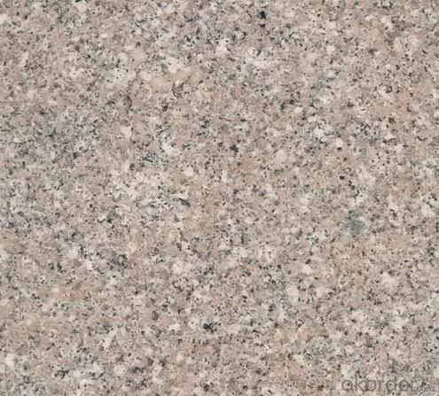 Granite Tile Shrimp Pink CMAXG4681