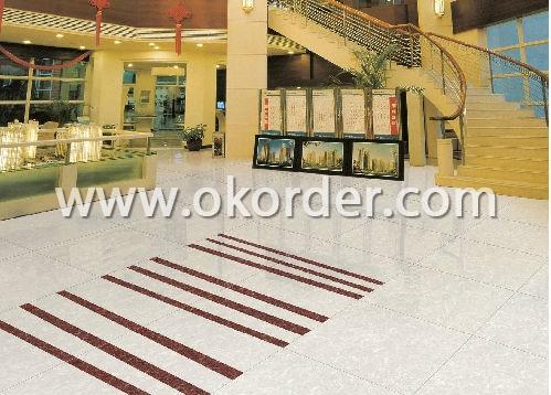 Polished Porcelain Tile CT26604