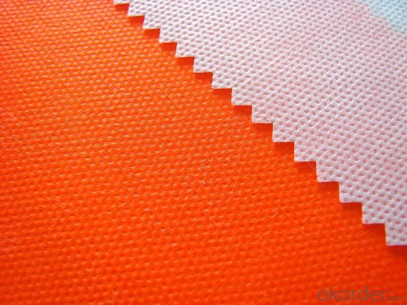 PET Spunbond Nonowven Fabric