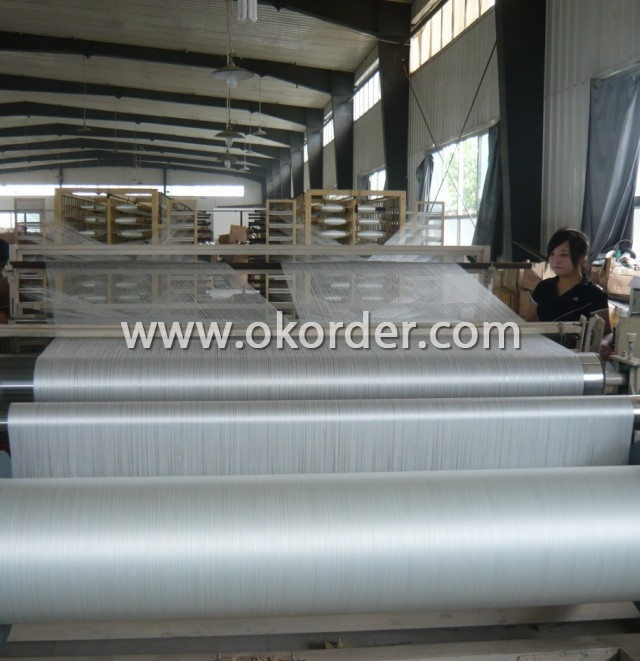 Coated Alkali-Resistant Fiberglass Mesh Cloth (siva filesi)