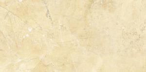 Glazed Tile-CMAX-PR674