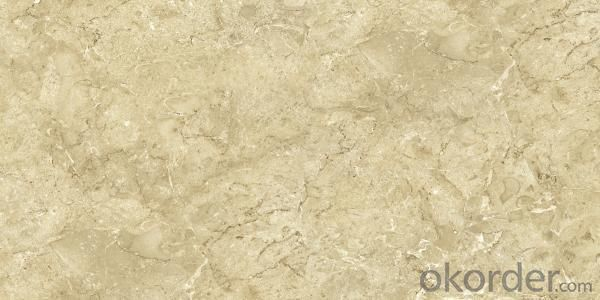 Glazed Tile-CMAX-60E131