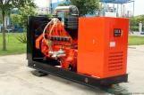 Biogas Generation