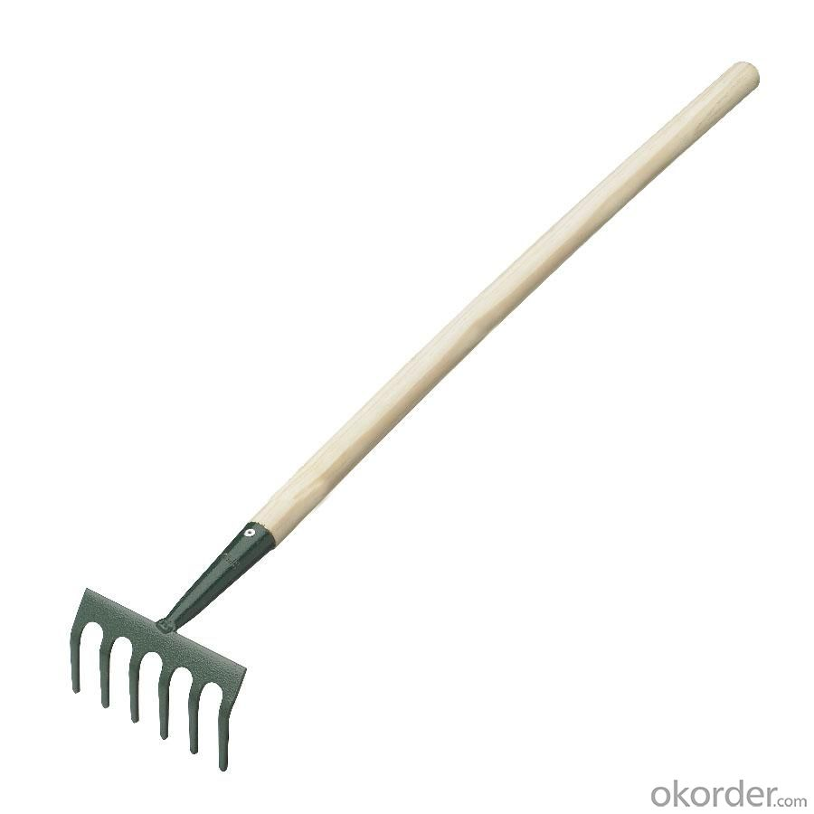 Rake For Farm Tool