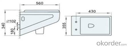 Ceramic Wall Hung Toilet CNBS-002