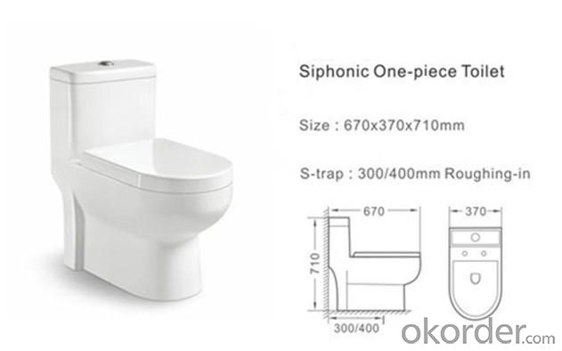 Siphonic One-piece Closet CH002