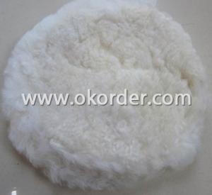 Wool Polishing Disc