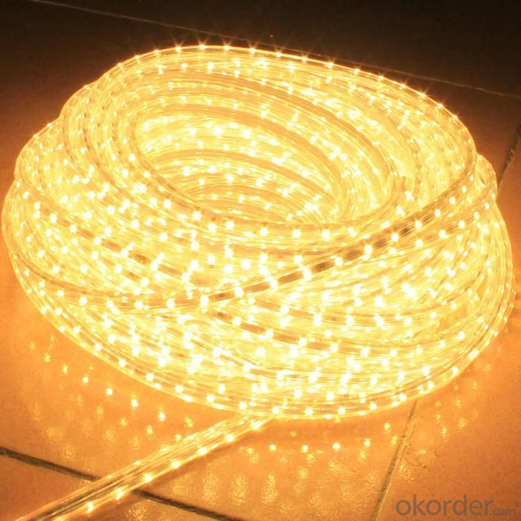 LED Rope Lights/ LED Strip Light