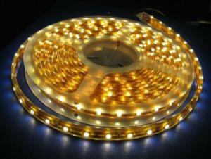LED Strips/ SMD Strip Light