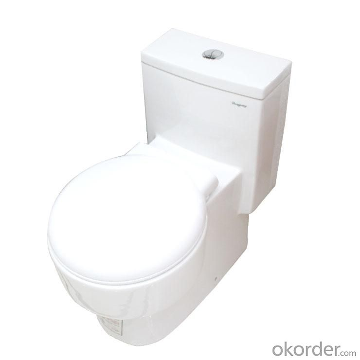 Ceramic Toilet CNT-1015