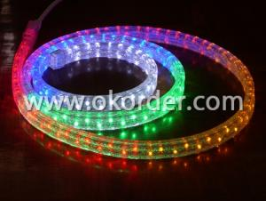LED Rope Light- 36leds/m 220V/110V