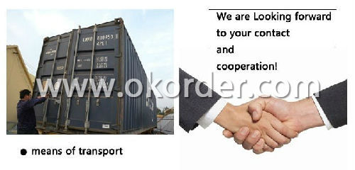 Container Loading of Fashion Shoe Racks