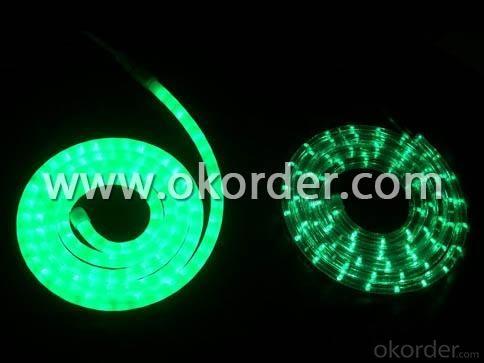 LED Rope Light- 36leds/m 220V/110V