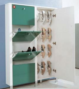 Fashion Shoe Racks