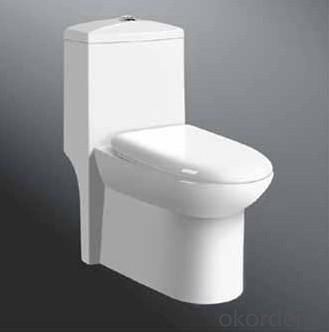 Ceramic Toilet CNT-1012