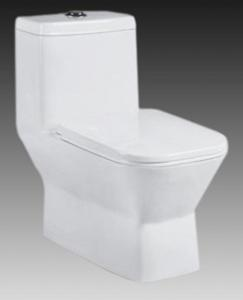 Ceramic Toilet CNT-1010