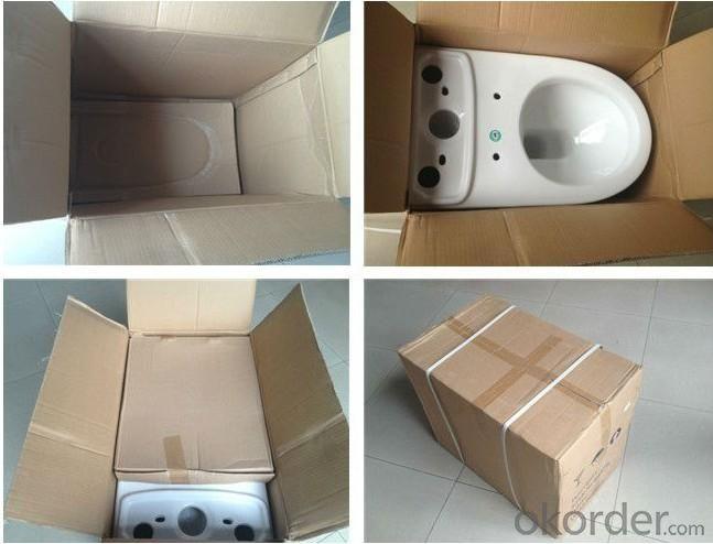 Ceramic Toilet CNT-1008