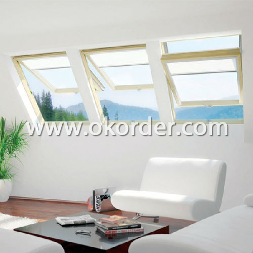 Dual Action Roof Window for home