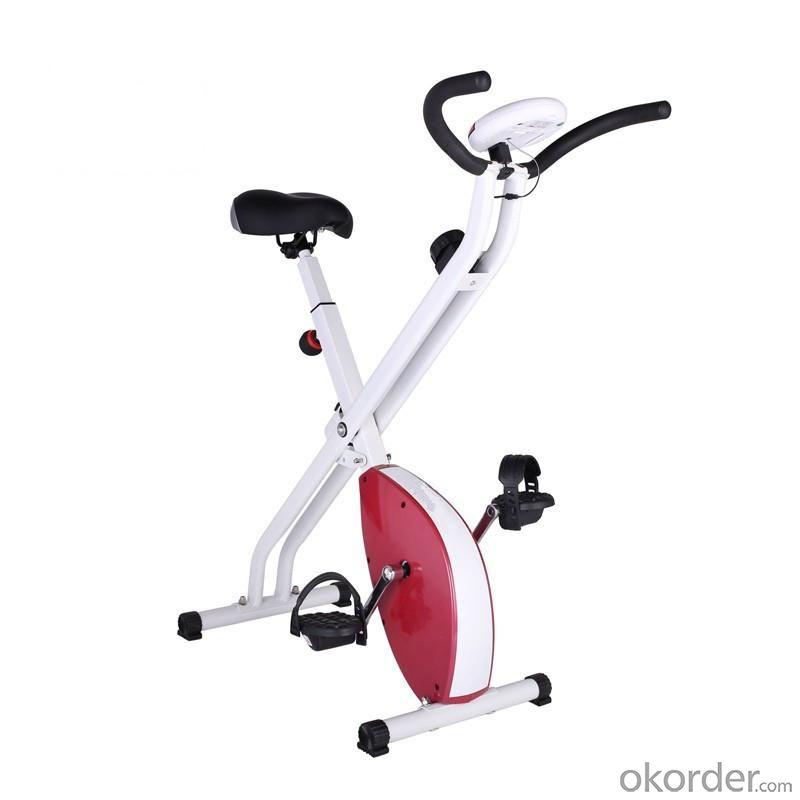 Magnetic Bike X1000