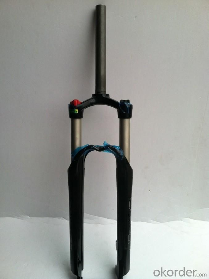 Bicycle Lock and fork Lock