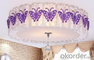 Living Room Light PVC Ceiling Lamp D500mm Ceiling Light Pendant Lights Energy-Saving Lamp Type-3