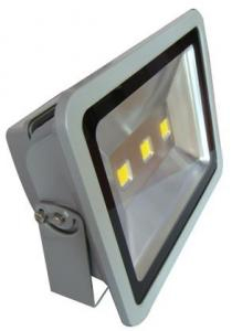 LED RGB Flood Light COB IR Inner Controller High Brightness IP 65 200W