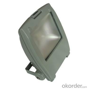 LED RGB Flood Light COB IR Inner Controller High Brightness IP 65 20W