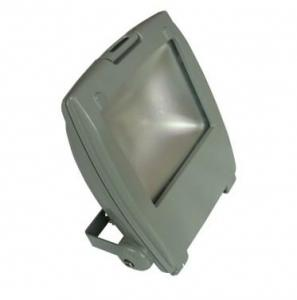 LED RGB Flood Light COB IR Inner Controller High Brightness IP 65 20W