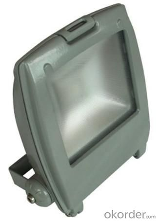 LED RGB Flood Light COB IR Inner Controller High Brightness IP 65 50W