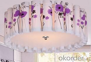 Living Room Light PVC Ceiling Lamp D500mm Ceiling Light Pendant Lights Energy-Saving Lamp Type-1