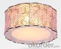Living Room Light 480*190mm Brush LED Ceiling Light Pendant Lights Only Fixture Type-7