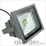 LED Flood Light High Brightness 30W