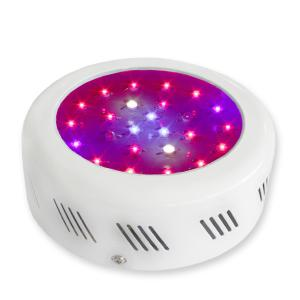 LED Grow Light Red630 Blue460 with 25x3Watt