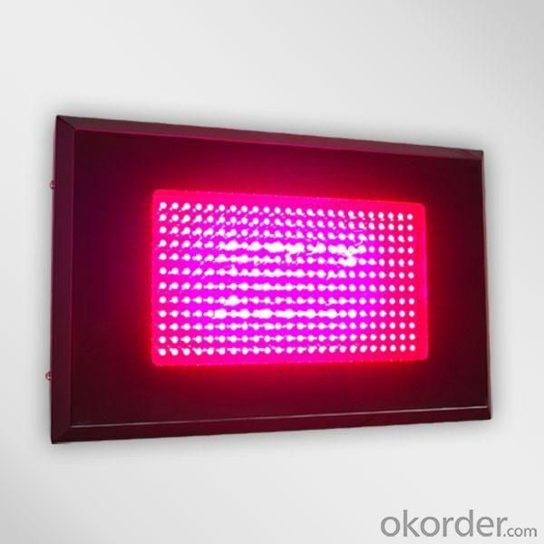 LED Grow Light Red630 Blue460 with  Full Spectrum 288x3Watt